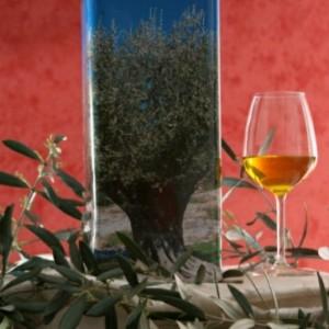 Olio Extra Vergine d'oliva Biologico 5L in Lattina